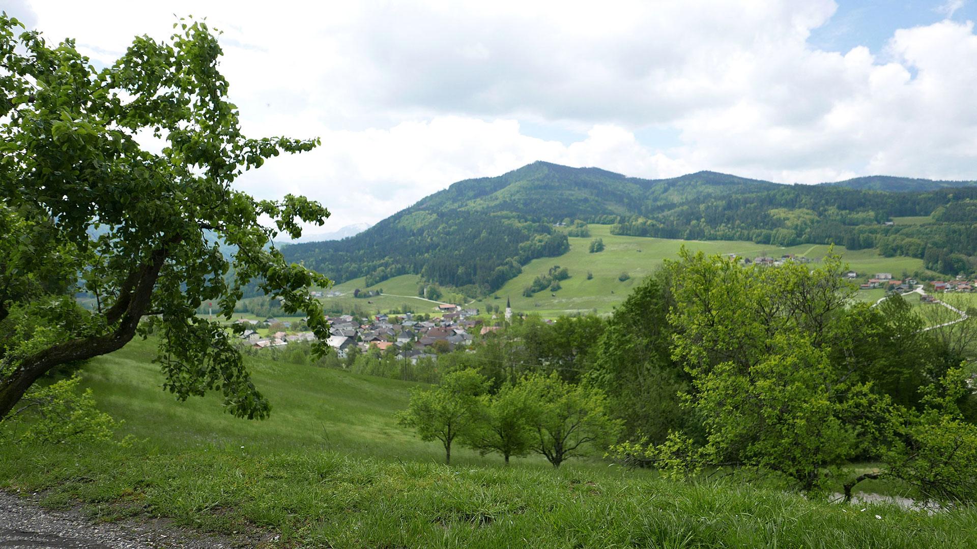 Ausblick auf Oberwang vom Gasthof Sonnenhof